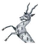 antelope, demi-