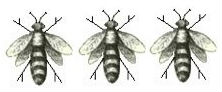 bees (3)