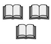 Bibles (3)