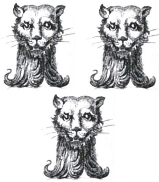 cats heads (3)
