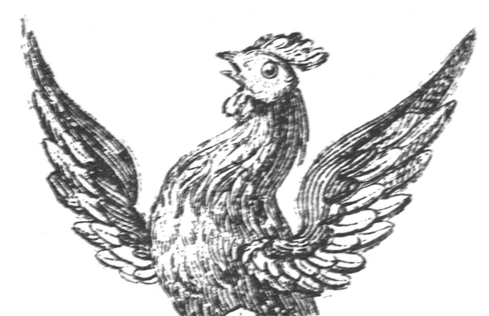 cock's head and wings
