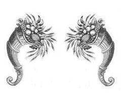 cornucopias (2)