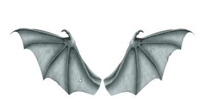 dragon's wings (2)