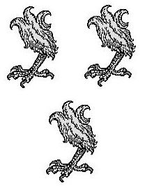 eagles legs (3)