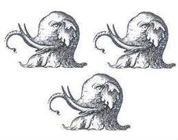 elephants heads (3)