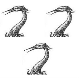 herons heads (3)