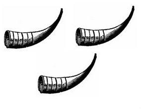 hunting horns (3)
