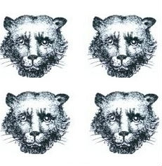 leopards faces (4)
