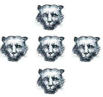 leopards faces (5)