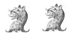 leopards heads (2)