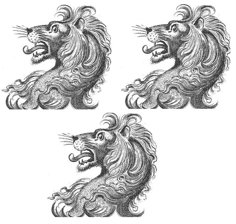lion's heads (3)