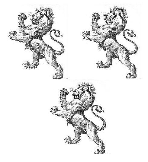 lions rampant (3)