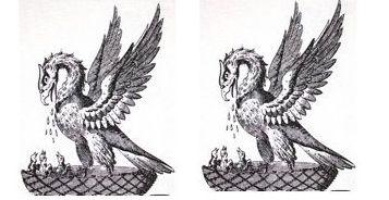 pelicans (2)
