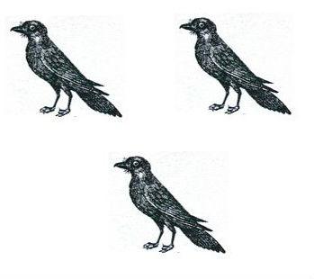 ravens (3)