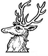 reindeer's head