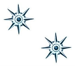 spur rowels (2)