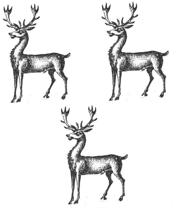 bucks (3)