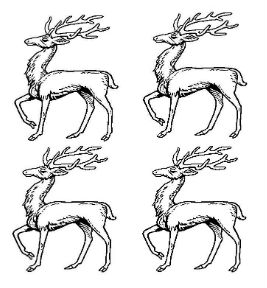 stags trippant (4)