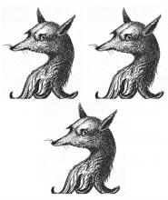 foxes heads (3)