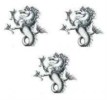 sea horses (3)