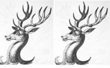 stags heads erased (2)