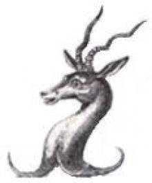 antelope's head