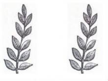 branches (laurel) (2)