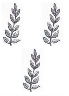 branches (laurel) (3)