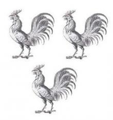 cocks (3)