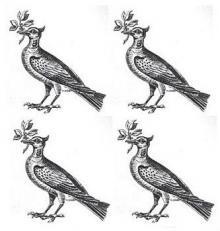 doves (4)