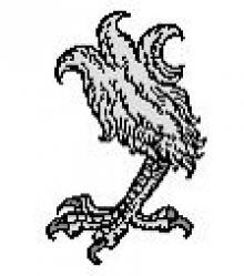 eagle's leg