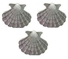 escallops (3)