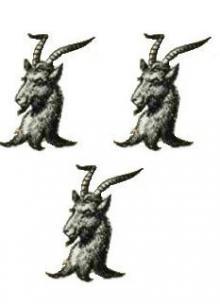 goats heads (3)