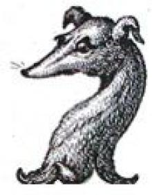 greyhound's head
