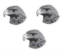 hawks heads (3)