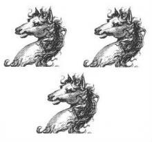 horses heads (3)