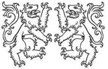 lions rampant combatant (2)