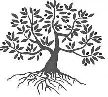 tree (olive)