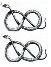 serpents (2)