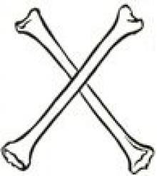 shinbones (2)