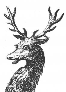 stag's head couped