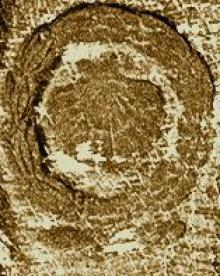 Levinge, Richard, Sir, 6th Baronet (1765 - 1848) (Stamp 1)