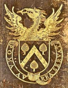 Pine (Stamp 1)
