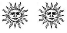 suns (2)