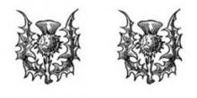thistles (2)