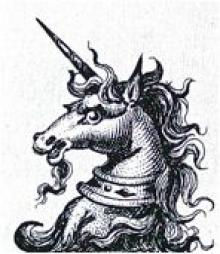 unicorn's head