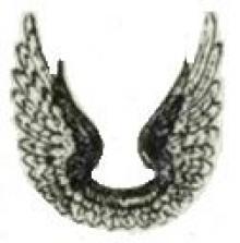 wings (2)