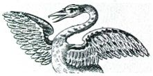 swan, demi-